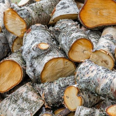 Fente de bois
